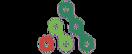 Alliance for Public Health, logo