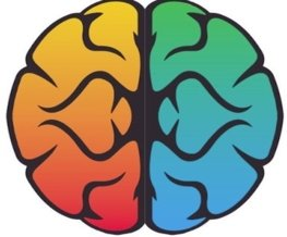 Prism Brain Mapping based on neuroscience