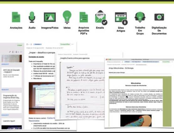Arquivos de estudos organizados