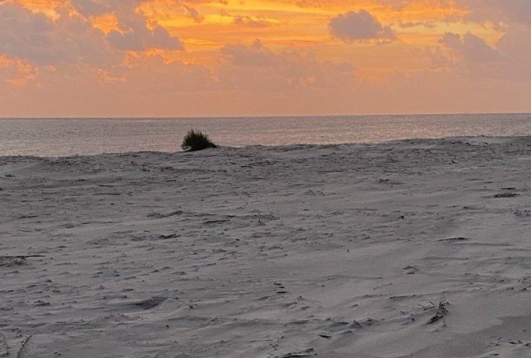 little-tybee-beach