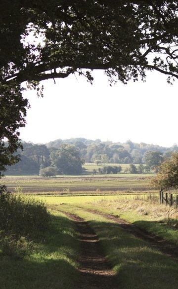 Ingoldisthorpe Countryside